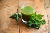 picture of nettle  - Nettle leaves and glass of nettle juice - JPG