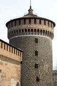 image of winter palace  - Milan  - JPG