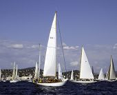 stock photo of radha  - classic yachts circling at the starting line in the middle the yacht radha