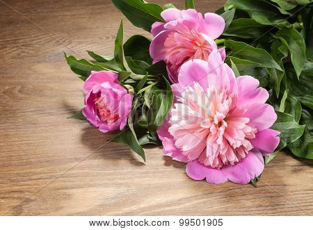 Branches Of Peony On The Table