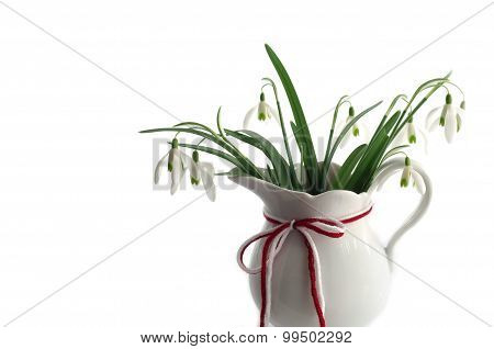 Snowdrops With Traditional Red White Cord Isolated On White