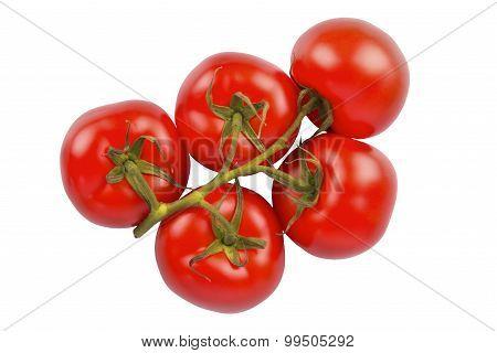 Bunch Of Fresh Tomatoes