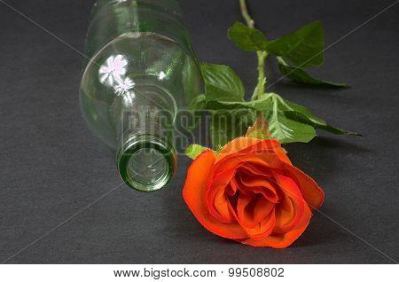 Empty Blanc Wine Bottle Witk Red Rose