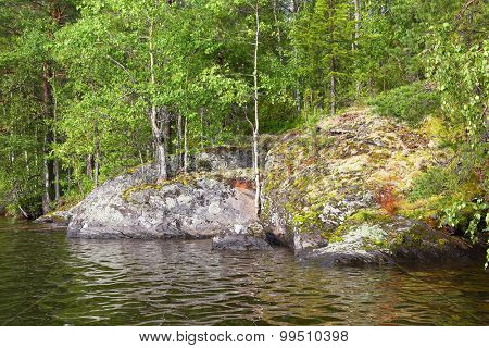 moss and lichen on stones - lake in Karelia