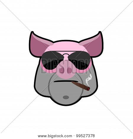 Angry Boar. Pig Head With Sunglasses And A Cigarette. Animal Farm Is A Bully. Logo Of The Animal.