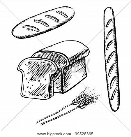 Sliced bread, long loaf and baguette