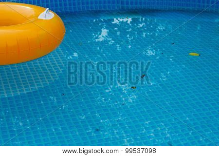 Pool With Leaves