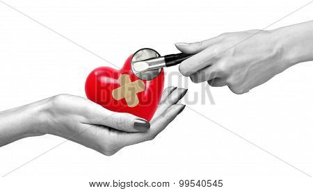 Red Heart With Medical Path In Woman Hand And Stethoscope Isolated On White