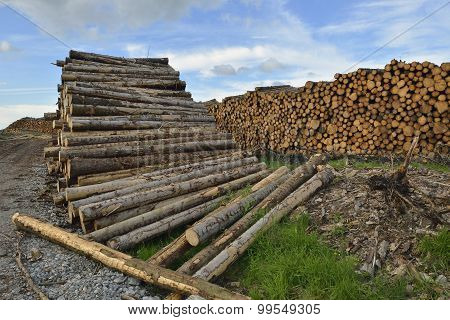 Forestry Timber Stacks