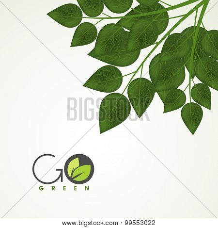 Creative green leaves on shiny background for Nature.