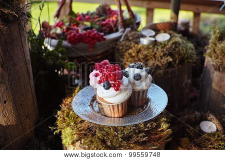Forest Candy bar, decorated with fresh berries delicious cakes. Wedding decor decorations for weddin