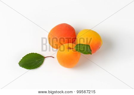 overhead view of three fresh apricots with leaf