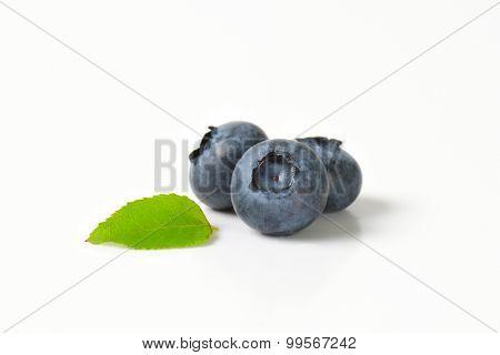 closeup of three dark blue blueberries with green leaf