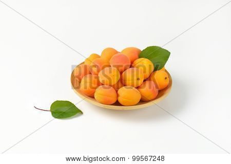matured apricots served on the wooden plate