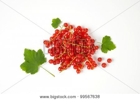 overhead view of red currant with green leaves