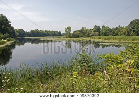 Tranquil Pond In Eastern Canada