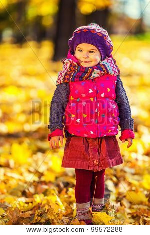 Cute little girl in the sunny autumn park