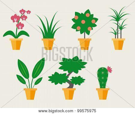 Flat style Houseplants