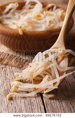 Macro Mung Bean Sprouts In A Wooden Spoon. Vertical