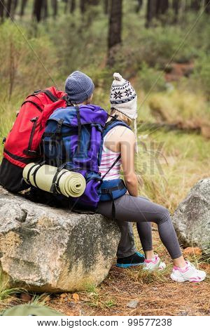 Rear view of a young happy hiker couple in the nature