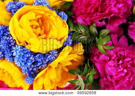 Composition with fresh spring flowers, closeup