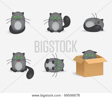 Set of cute gray cats with geen eyes