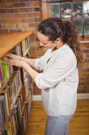 stock photo of librarian  - Librarian sorting books on the shelves at the elementary school - JPG