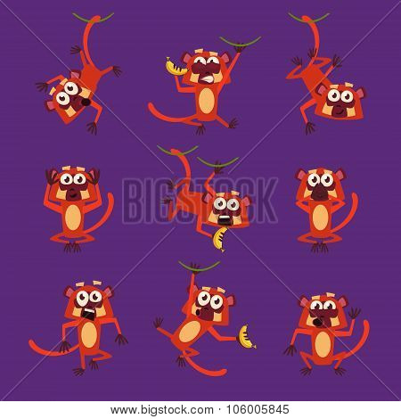 Monkeys in Different Poses, Vector Illustrations