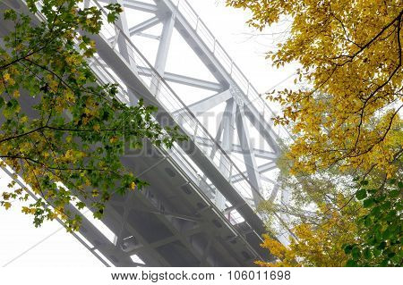 Railway metal bridge in the autumn forest