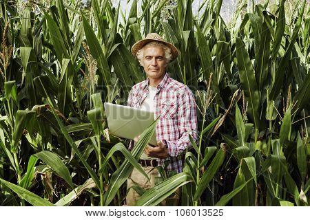 Farmer Using A Laptop In The Field