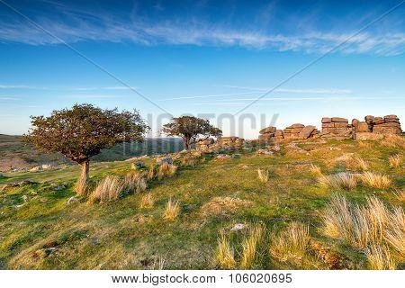 Coombestone Tor