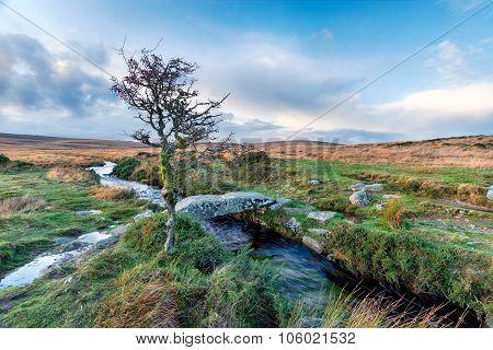 Walla Brook On Dartmoor