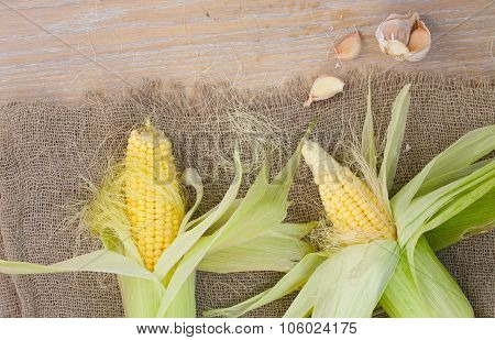 Corn Cobs On A Sackcloth