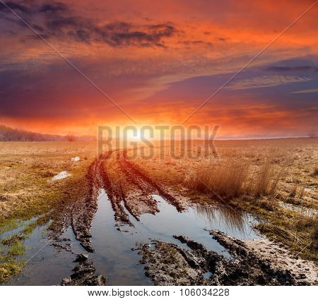 dirt road in spring steppe after rain against sunset background