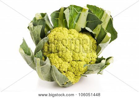 Green Organic Cauliflower Head