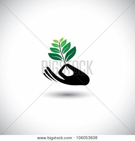 Sprout In A Hand Sign - Concept Vector Icon.