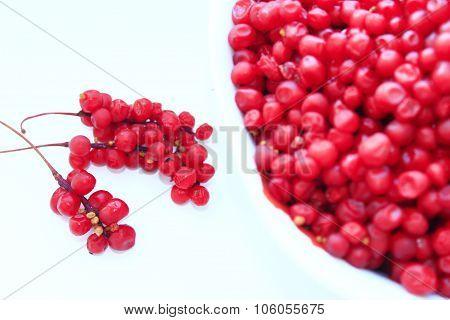 full plate of red ripe schisandra isolated