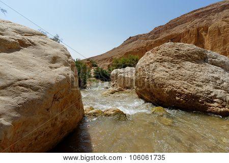 Wadi bin Hammad creek in desert in Jordan