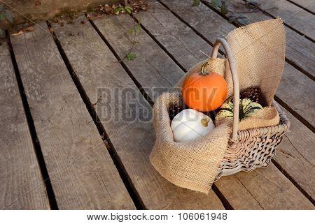 Pumpkins In A Hessian-lined Basket