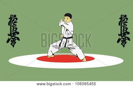 The Boy Showing Karate.