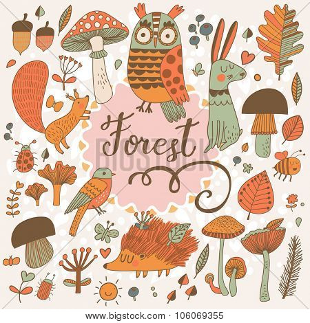Awesome forest set with lovely wild animals : rabbit, deer, hedgehog, squirrel, owl and birds. Stylish natural card with birds and animals in trees, mushrooms, leafs and insects in bright colors