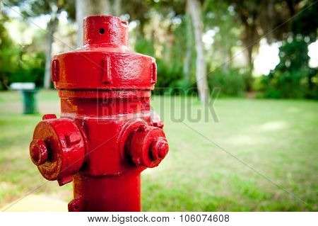 Red Hydrant Fire Prevention System In Green Wood