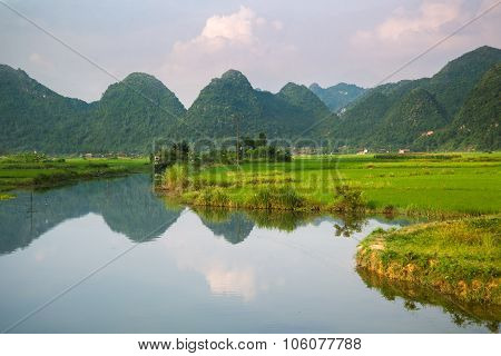 River And Rice Field In Vietnam
