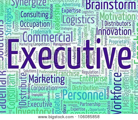 Executive Word Represents Senior Administrator And Ceo