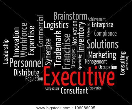 Executive Word Indicates Director General And Chairwoman