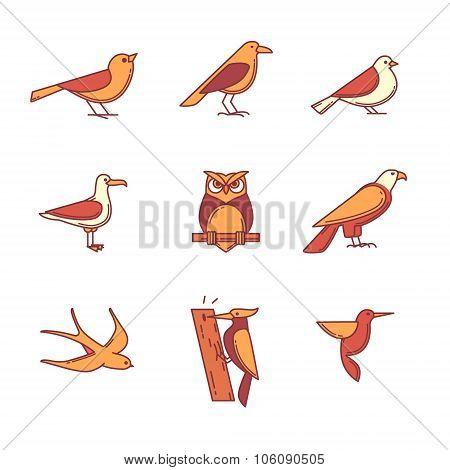 Birds icons thin line set