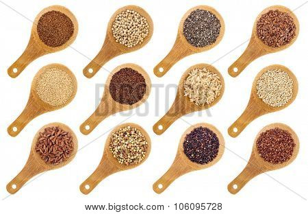 a variety of gluten free grains and seeds (buckwheat, amaranth, brown rice, millet, sorghum, teff, black, white and black quinoa, chia and flax seeds) - wooden spoons isolated on white