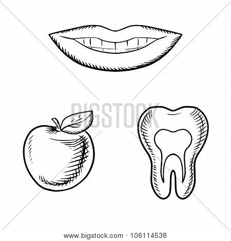 Smile, apple fruit and healthy tooth