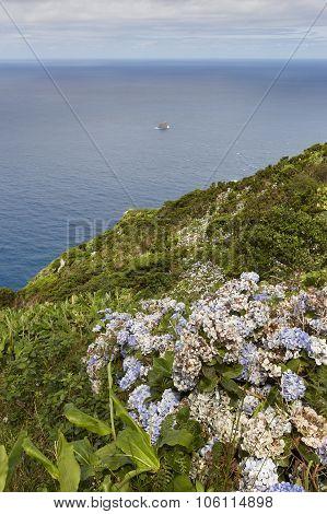 Azores Coastline Landscape In Flores Island. Ilheu De Monchique. Portugal