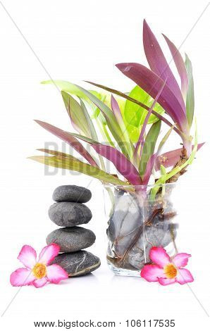 Zen And Spa Stone Concept Over White Background
